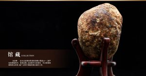 雍荷堂珐琅彩瓷器艺术品逆溯4